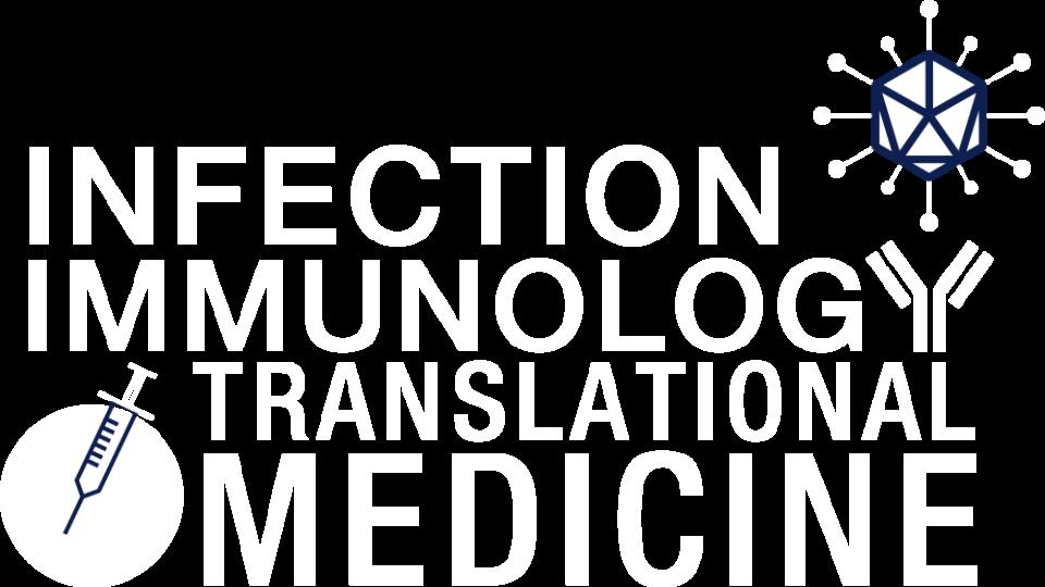 IITM logo* inverted